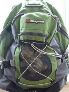 36a4c-duckbackpack2