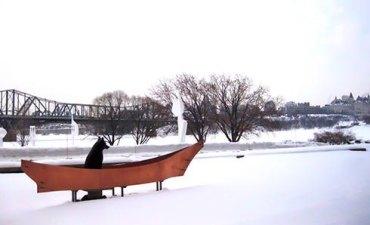 wolfinboatcanada