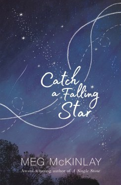 Image result for catch a falling star meg mckinlay