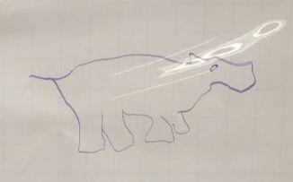 Rhinowonky